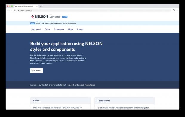 NELSON Standards docsite