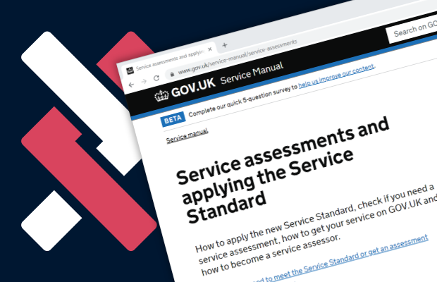 The NELSON logo alongside a screenshot of the GOV.UK service assessments page